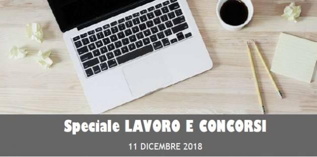 InformaGiovani Cremona Speciale Lavoro e Concorsi Proposte dell' 11  dicembre 2018
