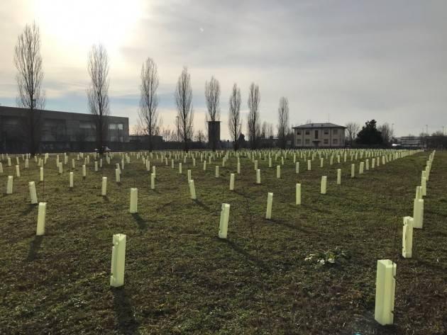 Prende il via l'intervento di piantumazione di 6.000 alberi nel Comune di Bergamo grazie all'impegno di E.ON Energia