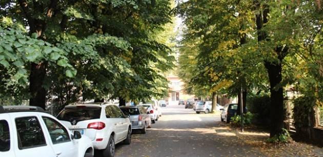 Crema: bagolari di via Bacchetta - il Comune interpella un paesaggista