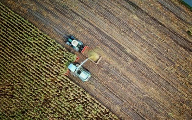 GAL Oglio Po - Contributi per le imprese agricole Domande entro il 29 marzo