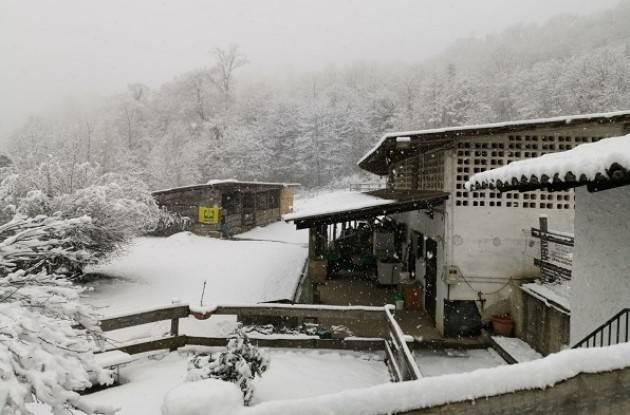 Lombardia Maltempo, neve è manna in inverno anomalo Trattori Coldiretti mobilitati contro rischio gelo
