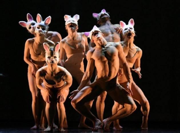 Alice - il nuovo spettacolo dei Momix - in scena al Teatro Ponchielli sabato 16 marzo