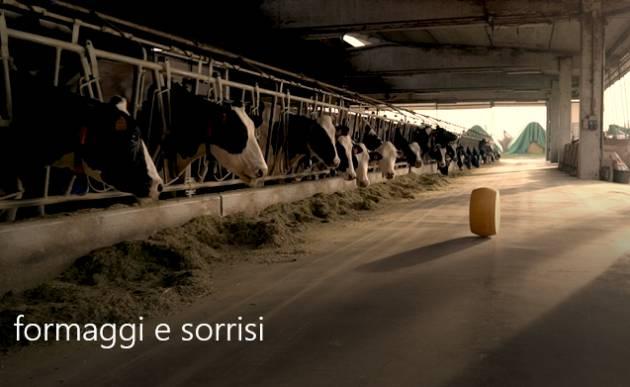 (Video) Formaggi&Sorrisi  DAL 12 AL 14 APRILE IL FORMAGGIO PROTAGONISTA A  CREMONA.