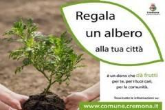Venerdì 29 e sabato 30 marzo la messa a dimora di 10 nuovi alberi a Cremona