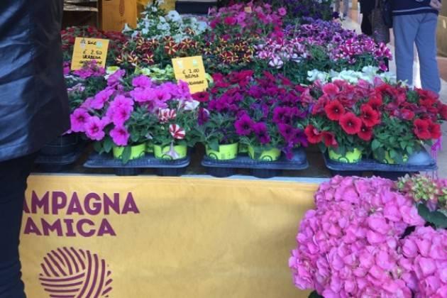 Campagna Amica: torna il mercato sotto al portico del Consorzio Agrario di Cremona