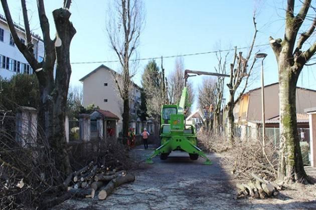Crema: iniziata l'ultima fase dei lavori in via Bacchetta