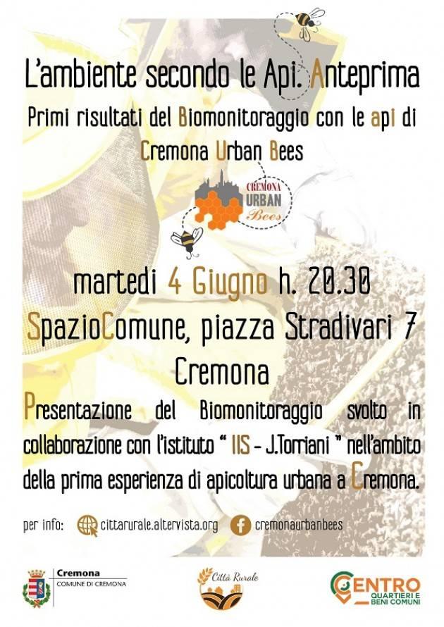 Urban Bees L'ambiente secondo le Api. Anteprima. Incontro di Cremona del 4 giugno 2019