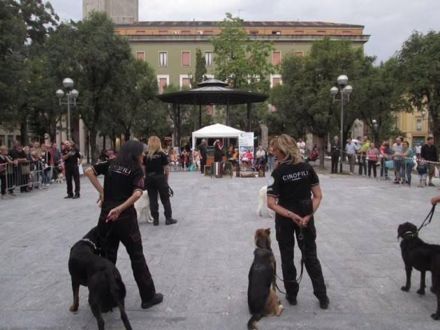 I cani del cap Tajetti a Cremona giardini Piazza Roma il 30 pv