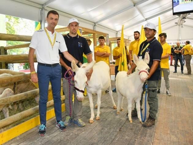 Coldiretti Scuola, lezioni di cibo dagli agricoltori per oltre 25 mila bambini lombardi