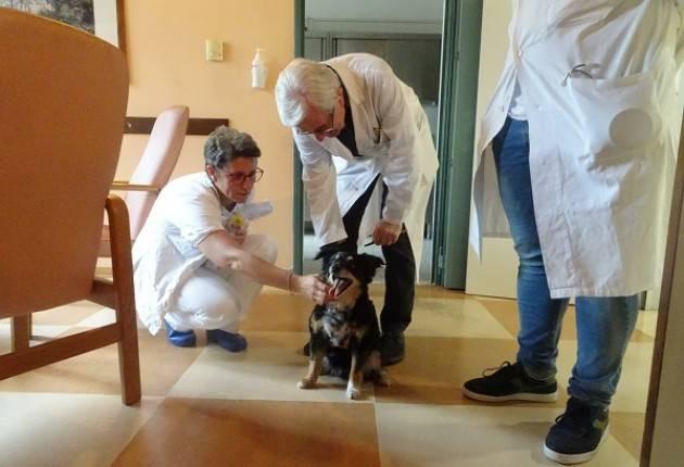 Hospice - ASST Cremona LA PET THERAPY AI GIOVEDI' D'ESTATE