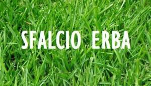 Cremona Iniziati oggi gli sfalci dell'erba in città