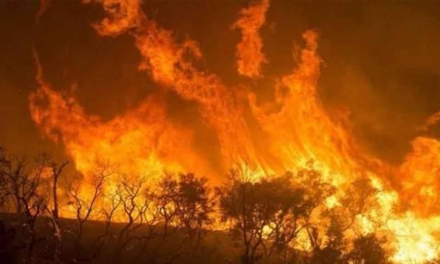 ADUC Incendi foreste africane. Un altro campanello d'allarme su cui la politica ha il dovere di intervenire