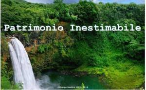 Foresta Amazzonica. L'Ambasciatore Brasiliano risponde alla  presidente Change Destiny