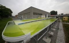 Rivolta d'Adda  Un'area di oltre 500 metri quadri dedicata allo sviluppo di tecnologie microalgali