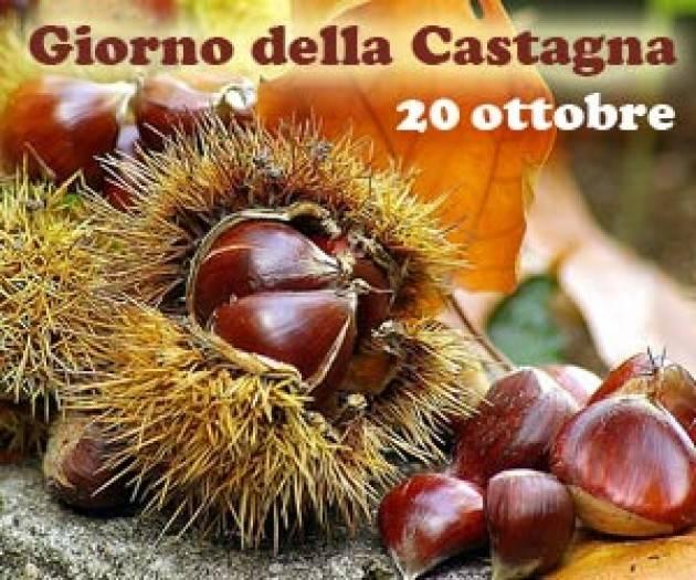 Calyx Domenica 20 ottobre  GIORNATA DELLA CASTAGNA Passeggiata storico-naturalistica per golosi a Chiusani (Pv)