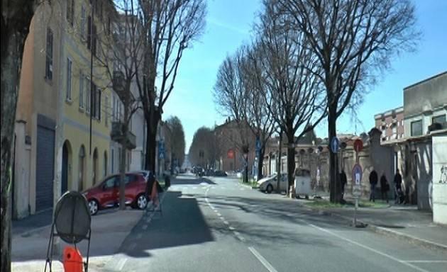 Saranno abbattuti tre alberi in via Brescia: i controlli effettuati dimostrano che sono staticamente pericolosi
