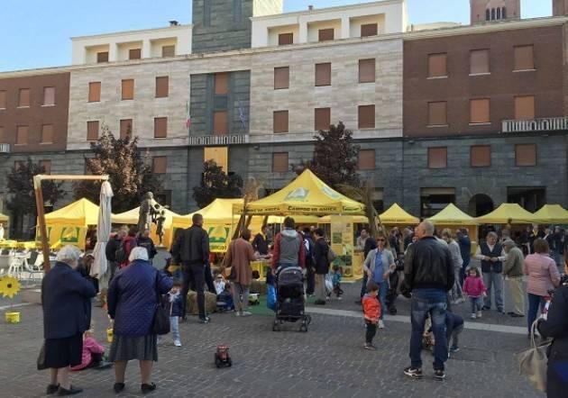 Coldiretti Cremona: domenica  13 ottobre in piazza Stradivari grande festa della zucca al Mercato di Campagna Amica