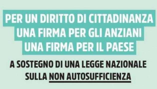 Firma Ecco perché serve una Legge sulla non autosufficienza | Mimmo Palmieri (SPI-Cgil Cremona)