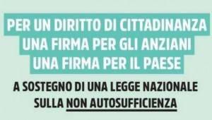 Firma Ecco perché serve una Legge sulla non autosufficienza   Mimmo Palmieri (SPI-Cgil Cremona)