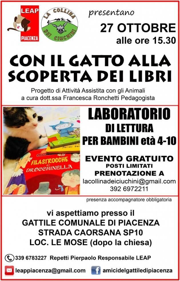 Piacenza 'Con il gatto alla scoperta dei libri , mici e bambini insieme al gattile comunale