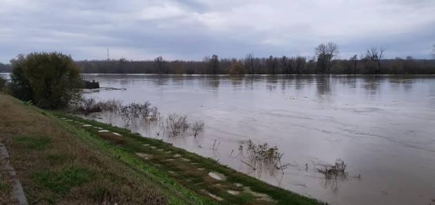Piena Po 24-27 novembre: ponti chiusi e animali in fuga. La piena in queste ore.