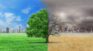 Lo stato dell'ambiente in Europa nel 2020
