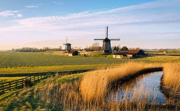 I Paesi Bassi sono diventati un narco-Stato?