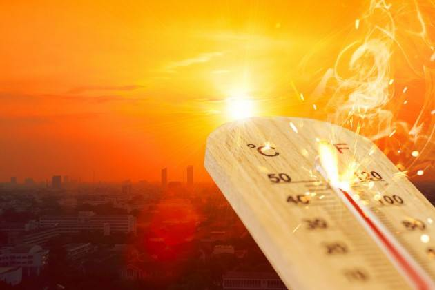 Il 2019 è stato l'anno più caldo mai registrato in Europa, e il secondo per il mondo