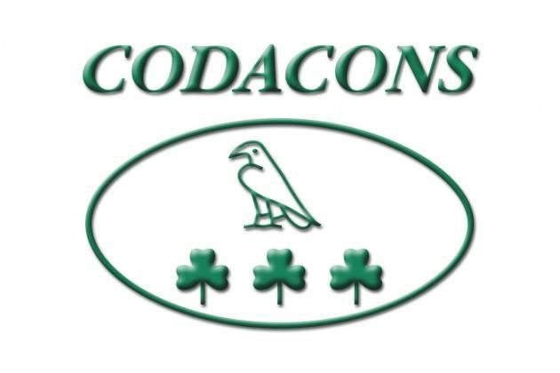 Codacons Cremona su responsabilità del professionista