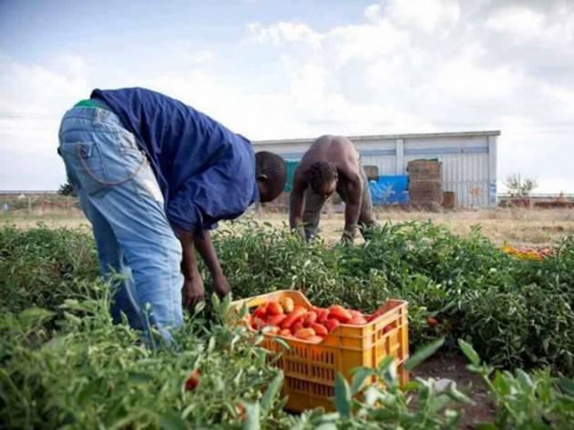 Pianeta migranti Cremona  Regolarizzare le persone non la forza lavoro