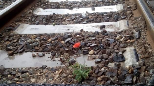 Il papavero rosso sulla strada ferrata | Ezio Corradi (Soresina)