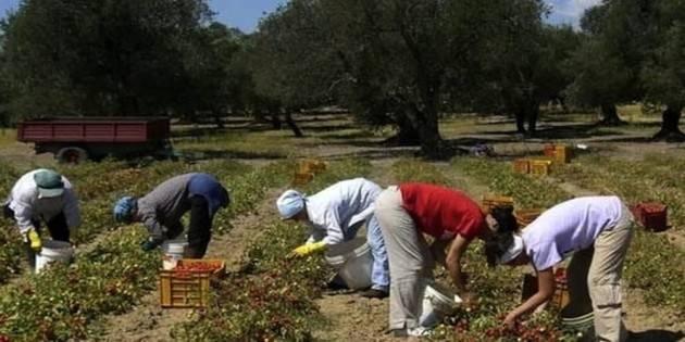 Cgil Toscana  Lavoratori 'Regolarizzarli subito'
