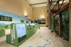 Dal Museo di Storia Naturale di Piacenza laboratori digitali per le scuole, aperte le prenotazioni