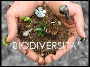Arrestare perdita biodiversità per un sistema alimentare sano e sostenibile