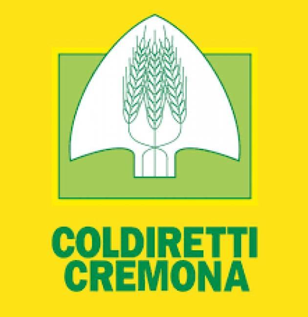 Campagna Amica, riaprono i mercati (Soresina, Cremona, Casalmaggiore, Crema)