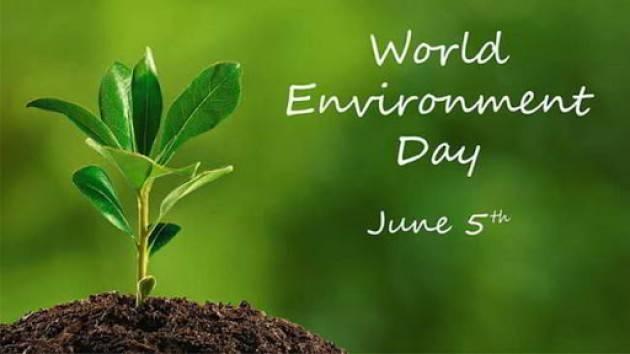 Oggi 5 giugno Giornata internazionale dell'ambiente 2020 |CNDDU