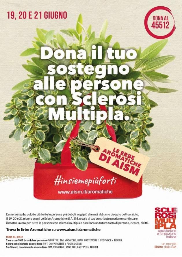 Venerdì 19, sabato 20 e domenica 21 giugno Le 'Erbe Aromatiche di AISM' aiutano le persone con sclerosi multipla