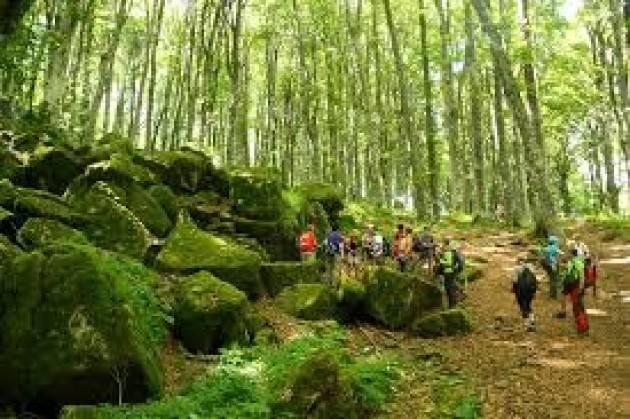 LNews-LOMBARDIA, DA LUGLIO A OTTOBRE 43 ESCURSIONI 'GRATUITE' NELLE FORESTE