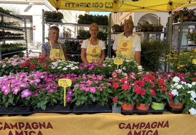 Coldiretti Campagna Amica, tornano i fiori domani al Mercato di Cremona