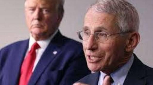 Fauci: tesoro nazionale e i deboli attacchi di Trump | Domenico Maceri, PhD,USA