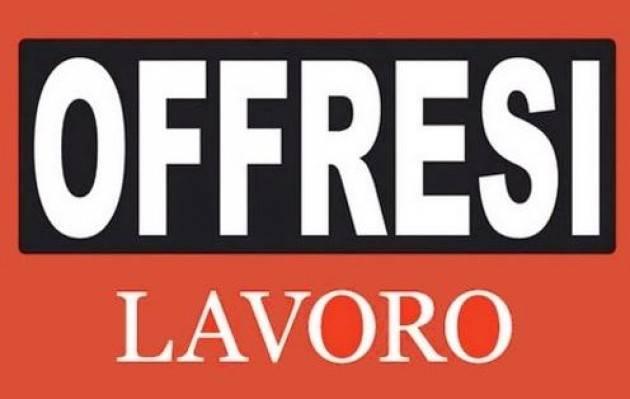 Cremona  questa settimana 89 offerte di lavoro nei Centri per l'Impiego   martedì 18 agosto 2020