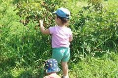 Per chi suona la campanella: primo giorno di scuola all'agrinido Piccoli Frutti di Cremona