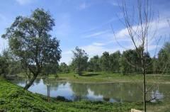 """Domenica 13 settembre """"BioBlitz"""" nel Parco del Po e del Morbasco"""
