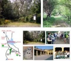 Bosco Didattico di Castelleone aperto domenica 13 settembre