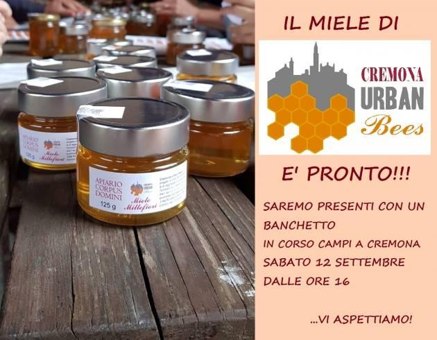 Cari Amici delle Api, il miele di Cremona Urban Bees è pronto!!!