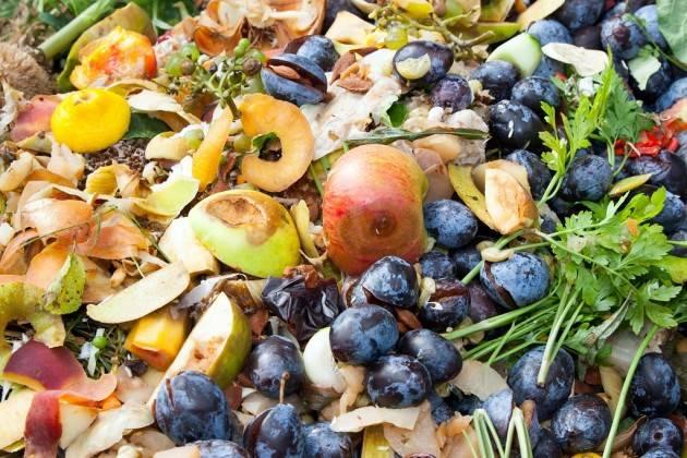 LombNews Giornata di sensibilizzazione del valore del cibo, Regione in prima linea