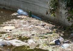 Codacons CREMONA: DEGRADO NELLA FONTANA DI PIAZZA ROMA