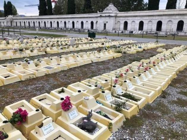 Anche a Brescia cimitero feti
