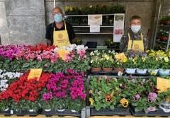 """""""Martedì fiorito"""" a Cremona: domani fiori e cibi di stagione al mercato di Campagna Amica"""
