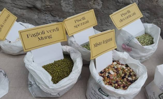 Il bonus ''Filiera Italia'' è legge, contributi  alla ristorazione che acquista il made in Sondrio